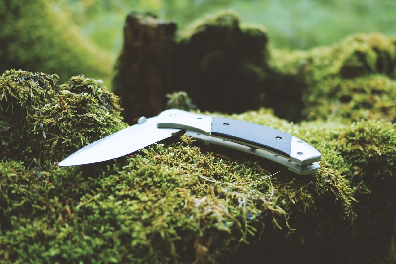 Folder Knife sitting in nature